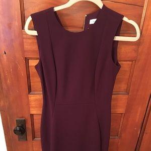 BNWT Calvin Klein Plum Dress